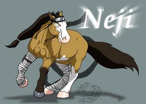 Neji_pony_by_WSTopDeck